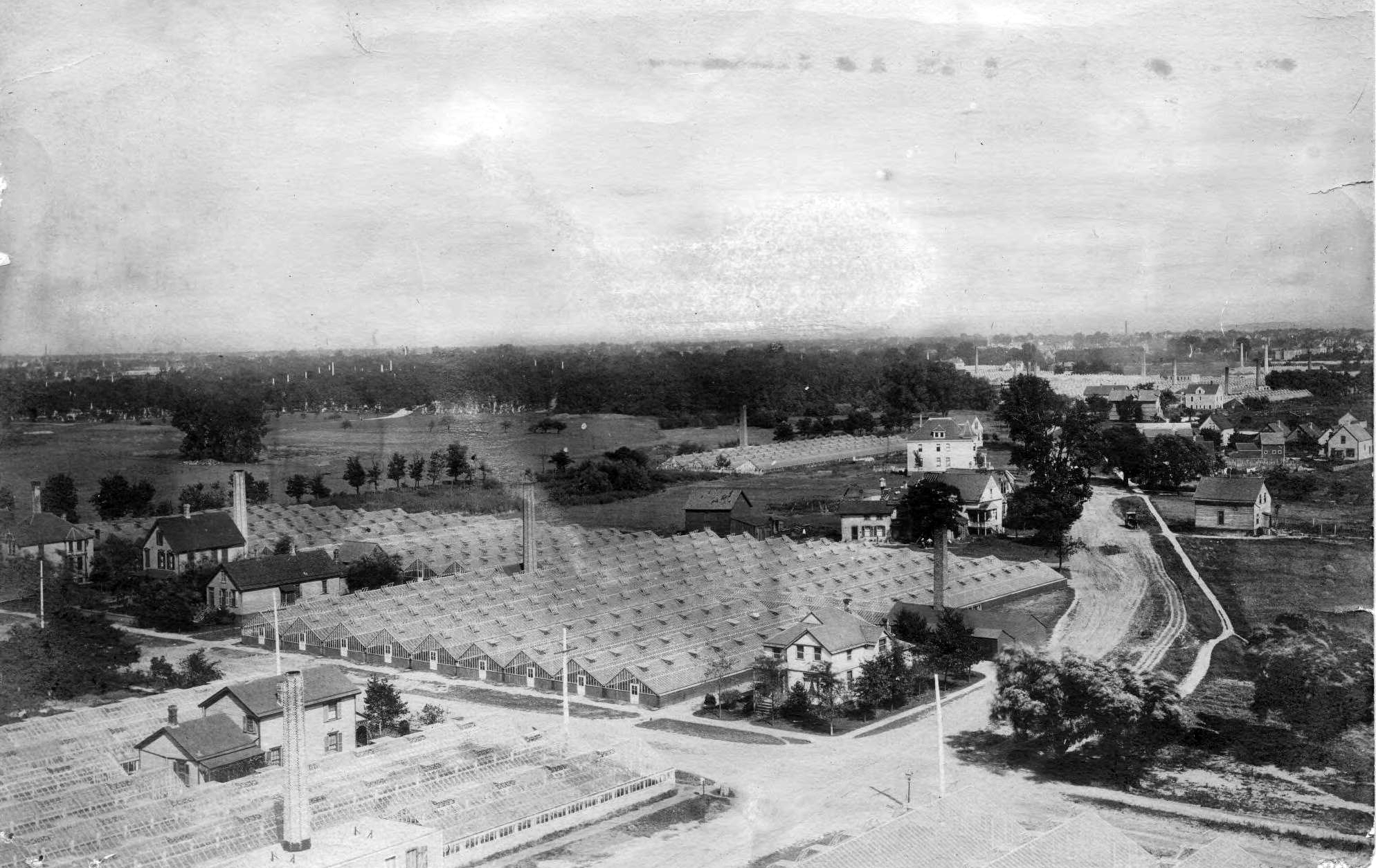 J.A. Budlong's greenhouses in Bowmanville covered an expanse of land near Foster and Lincoln Avenues in the Lincoln Square neighborhood. (Courtesy Sulzer Library)
