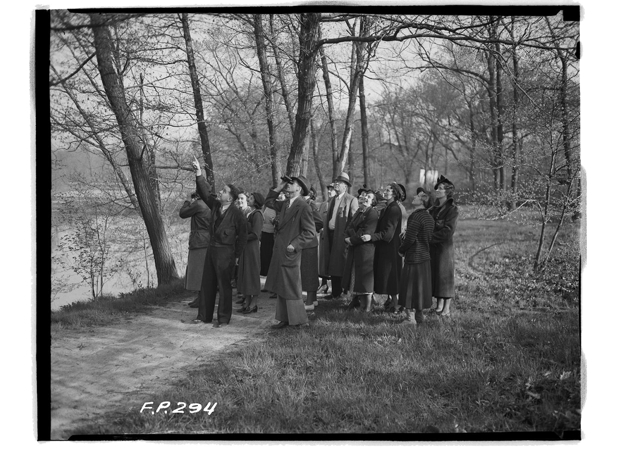 In 1916, the forest preserves became a reality and visitors could escape the city to enjoy the flora and fauna. (Courtesy University of Illinois at Chicago Library​)
