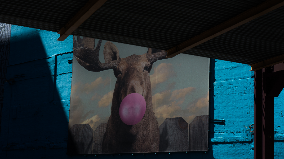 """Moose Bubblegum Bubble"" by Jacob Watts outside of Columbia College. (Sebastian Hidalgo/WBEZ)"