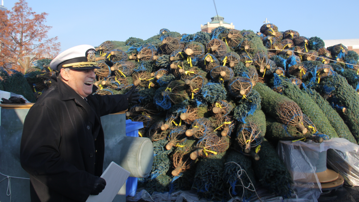 Captain Dave Truitt stands on the stern of the Christmas Ship with the pile of trees.