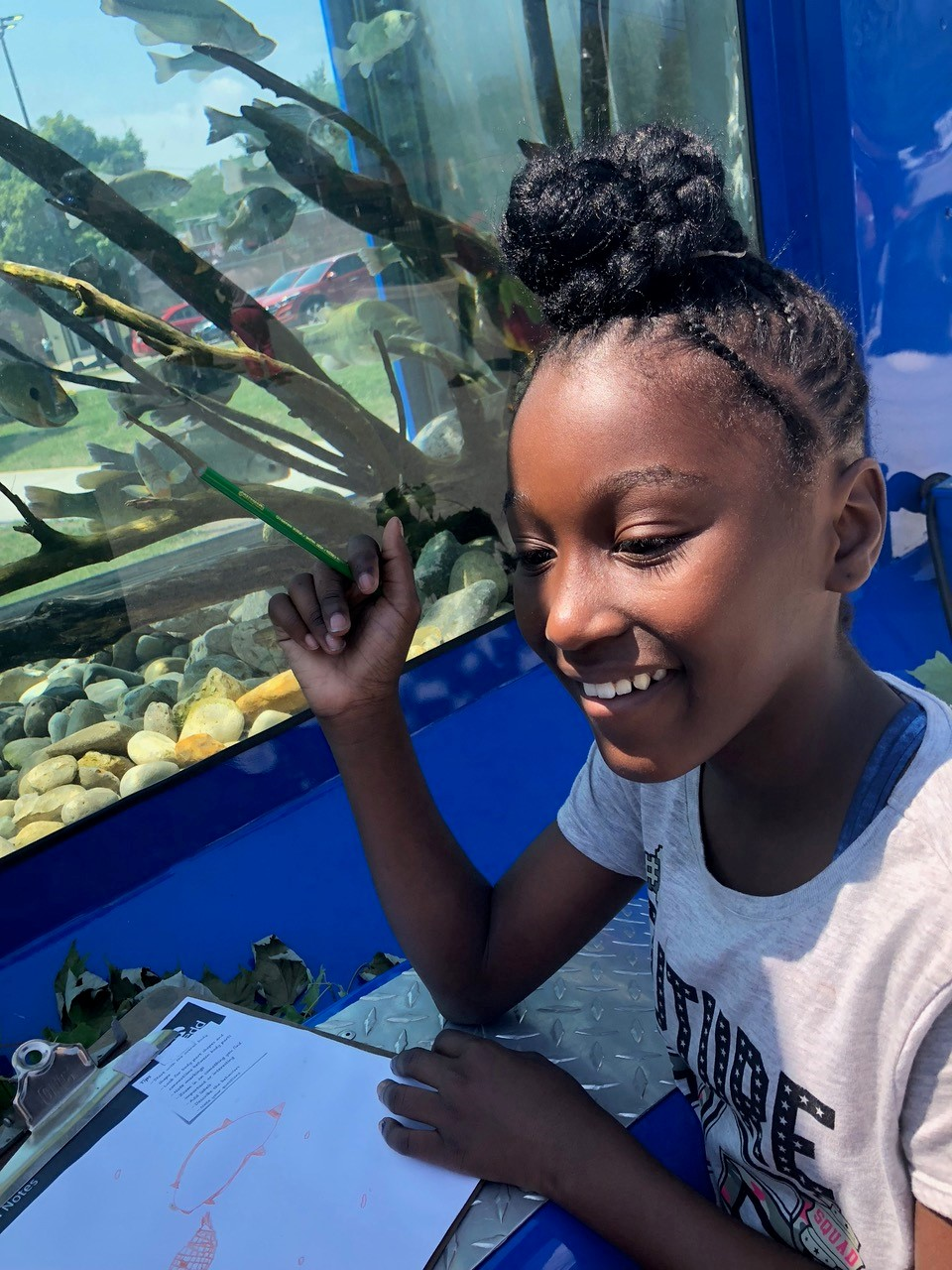 Justice Stipe, 10, stares at the fish long and hard as she draws them and notes their behavior, for one of the children's activities. (Linda Paul/WBEZ)