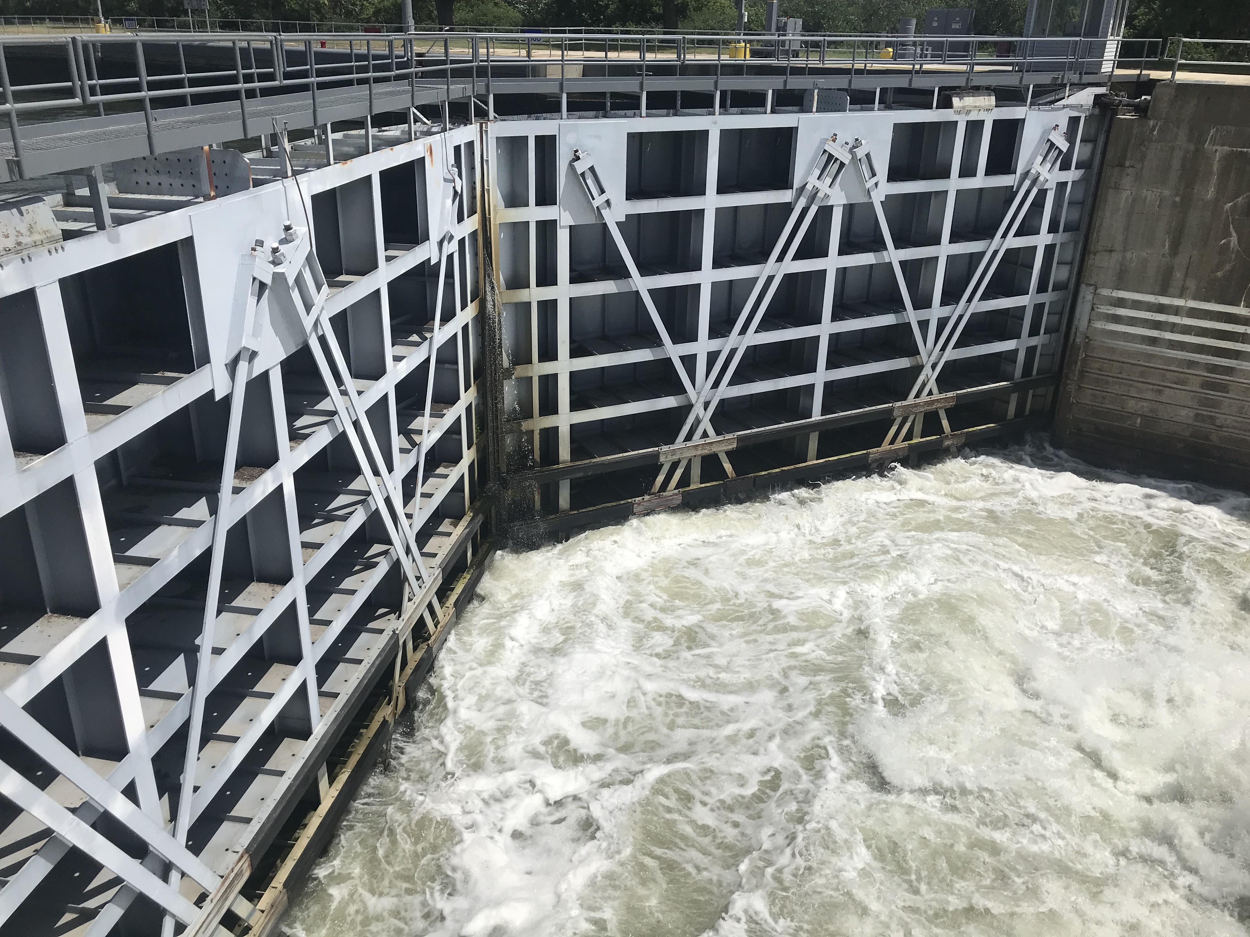 asian carp dam
