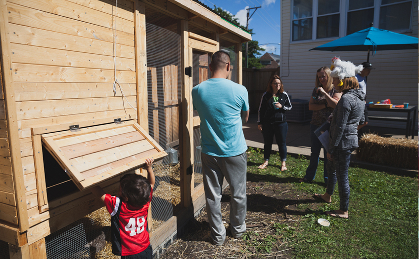 Every year the Chicagoland Chicken Enthusiasts organize a coop tour of chicken-friendly backyards across the city. (Courtesy Citybee Studio)