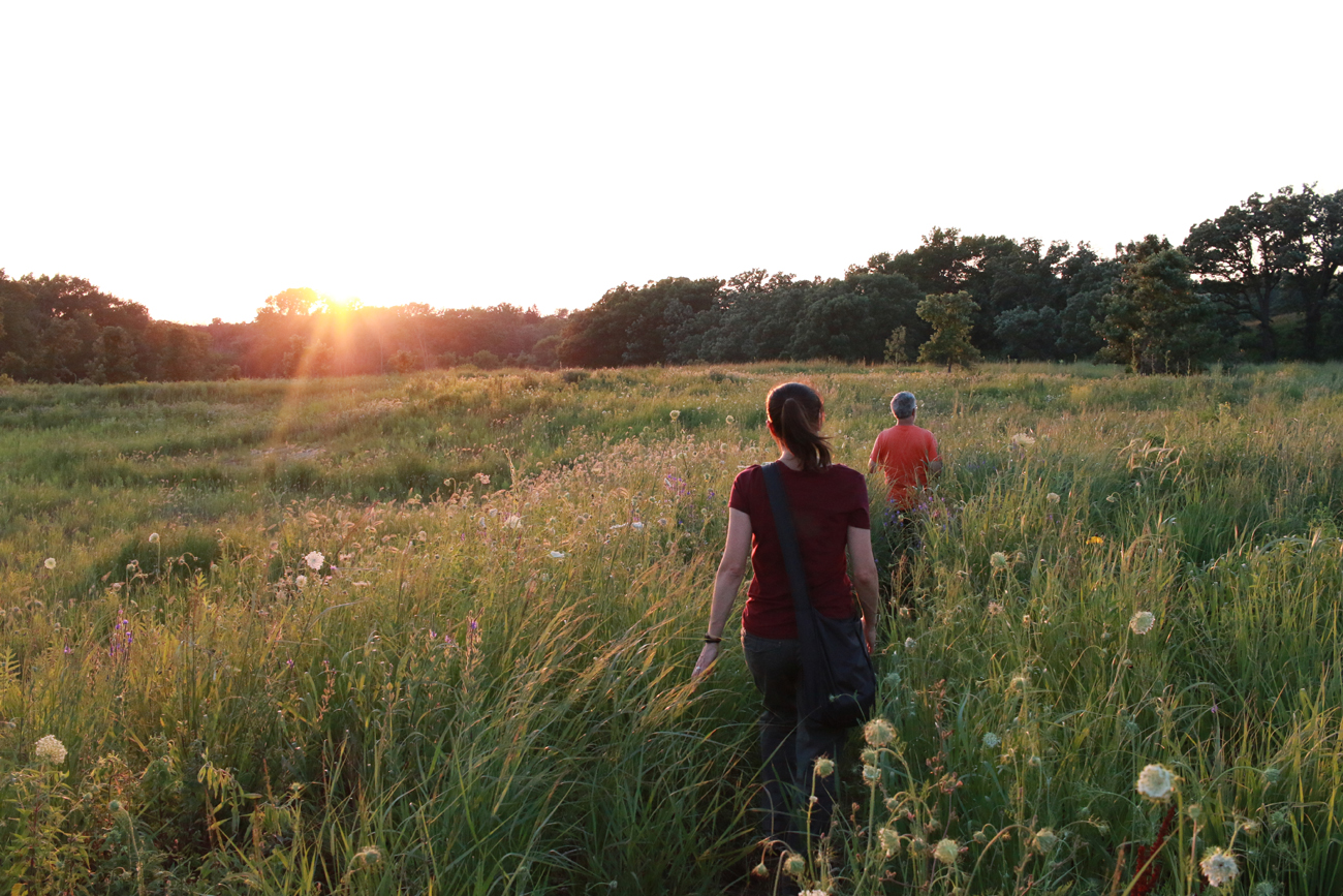 Questioner Erin Pavlich and Doug Taron, chief curator of the Chicago Academy of Sciences at the Peggy Notebaert Nature Museum, visit Bluff Spring Fen near Elgin to look for the lightning bug density Erin remembers as a kid. (WBEZ/Sean Kennedy)