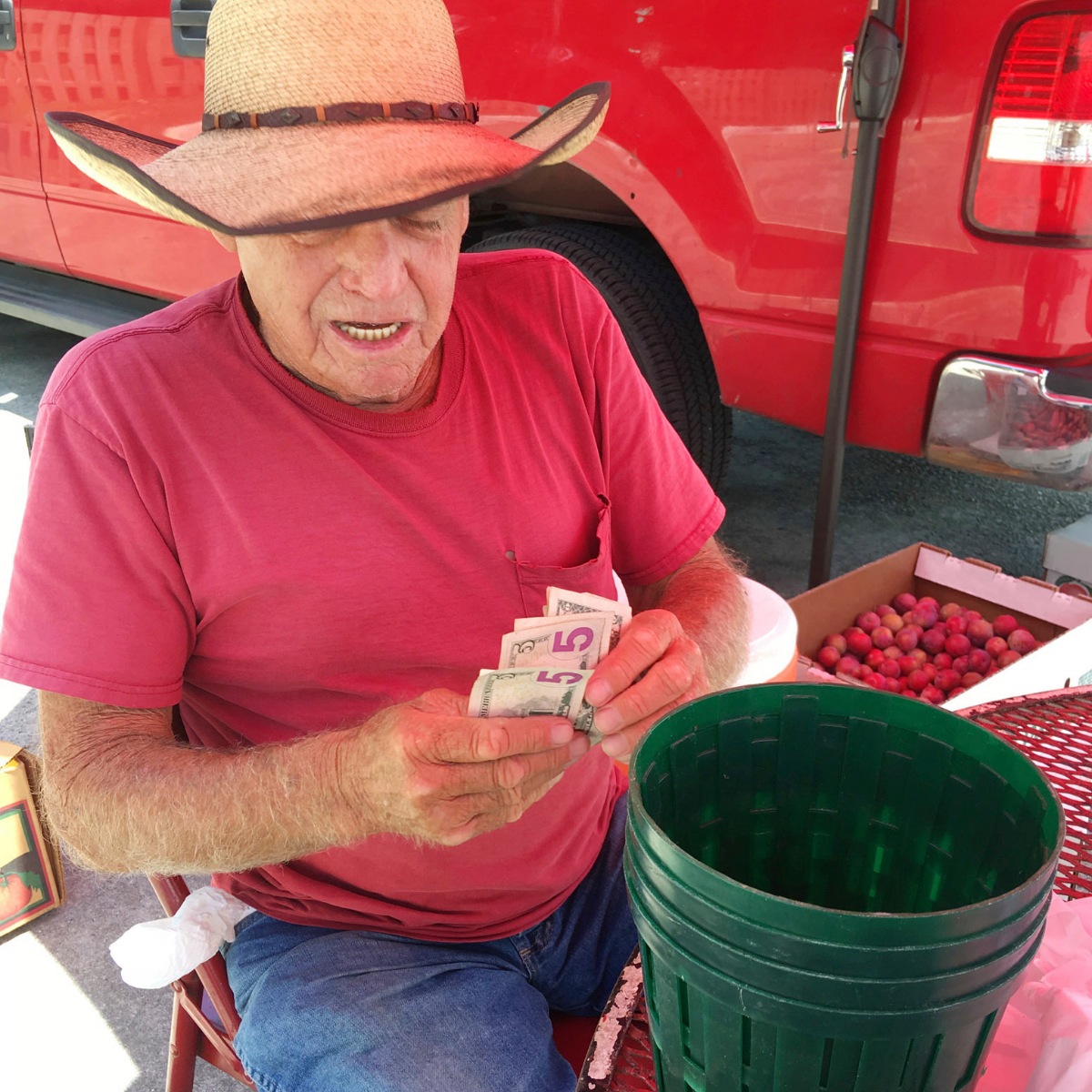 Floyd Champion, 77, counts money at his roadside produce stand in Alabaster, Ala., on July 3, 2018. A big fan of President Donald Trump, Champion said he plans to spend July 4 selling watermelons, tomatoes and other produce from the back of his pickup truck. Champion said he is feeling more patriotic than ever because of the success Trump has had in office. (AP Photo/Jay Reeves).